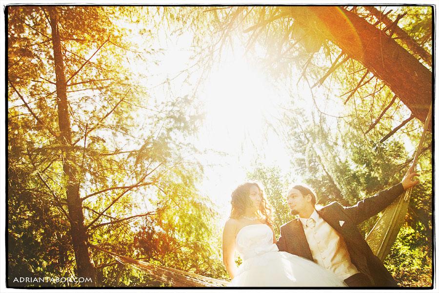 ślub mikołów