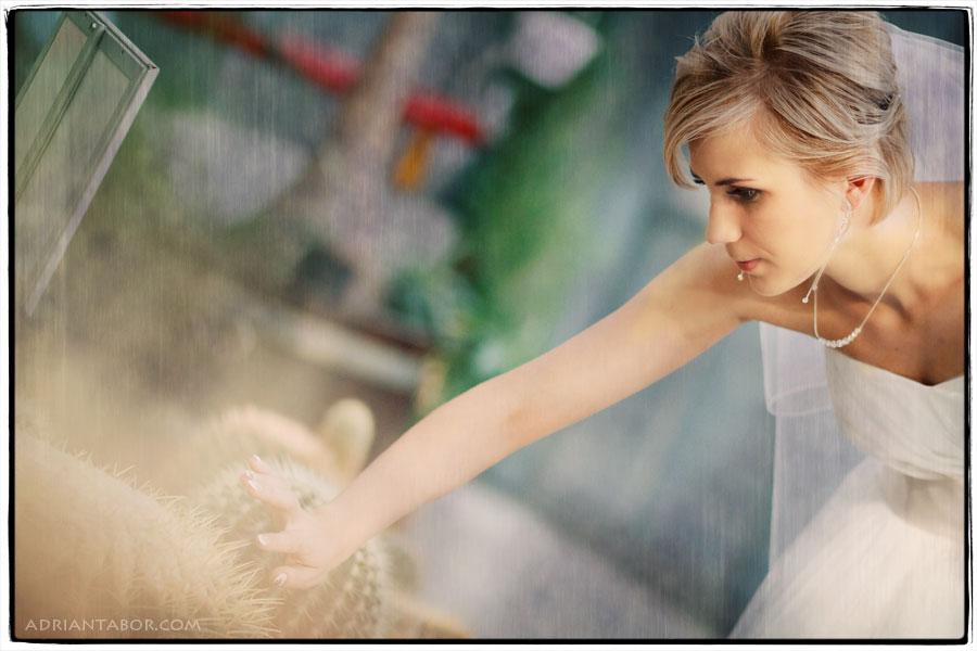sesja ślubna palmiarnia gliwice
